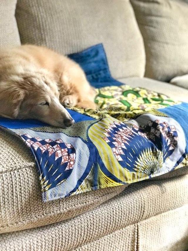 犬用スカーフXL