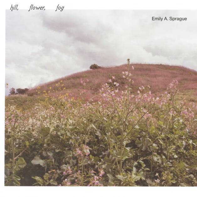 Emily A. Sprague - Hill, Flower, Fog (LP)