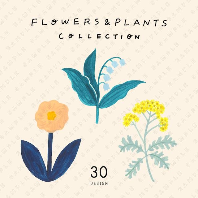 花と植物の素材集 FLOWERS & PLANTS COLLECTION