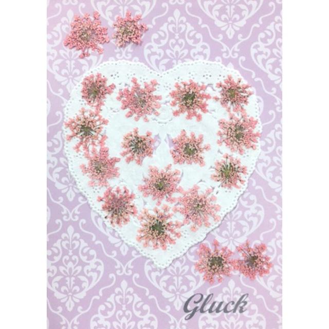 コンパクト押し花 ハートフルレースフラワー(着色 桃色) 少量をパックにしてお届け! 押し花素材