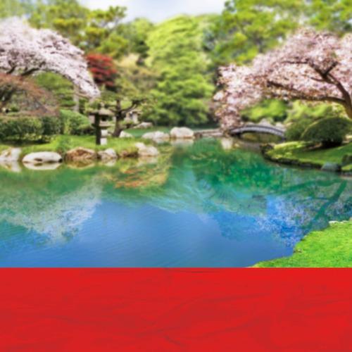 Ca_桜咲く日本庭園