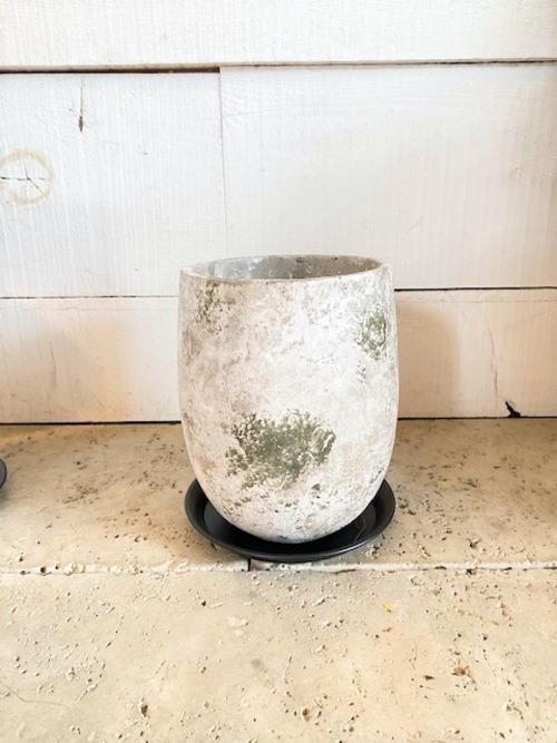 セメント鉢&アイアン皿(トール) ※5号鉢サイズ