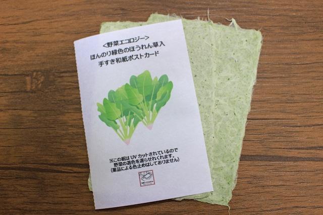 <野菜エコロジー>ほんのり緑色のほうれん草入手すき和紙ポストカード(2枚セット)