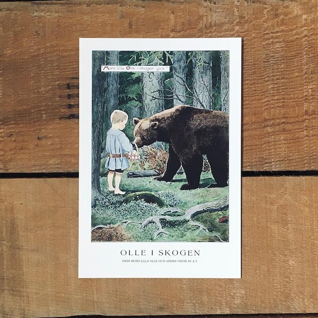 ポストカード「OLLE I SKOGEN(MORS LILLA OLLE - 01)」