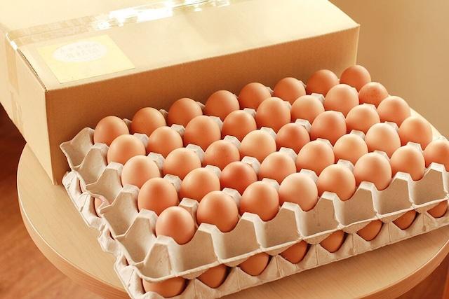 永光農園の平飼い有精卵 80個入り