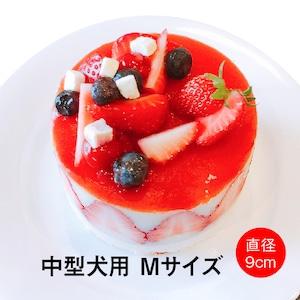 わんちゃん用いちごフレジエケーキ(Mサイズ)