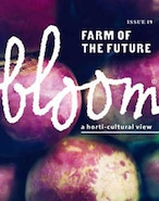 bloom ISSUE 19
