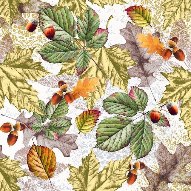 【Nouveau】バラ売り2枚 ランチサイズ ペーパーナプキン Fall foliage ホワイト