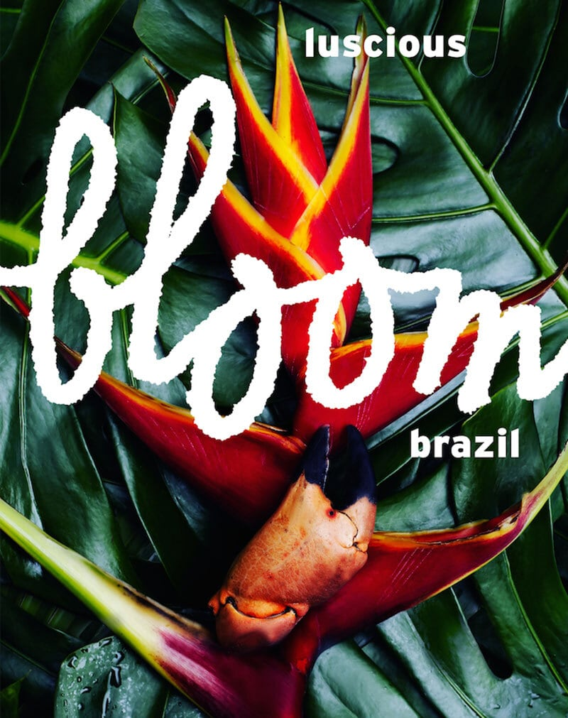 bloom ISSUE 22