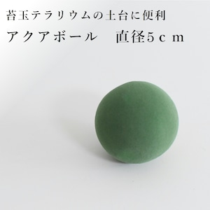【苔玉テラリウムの土台に】アクアボール 直径5cm