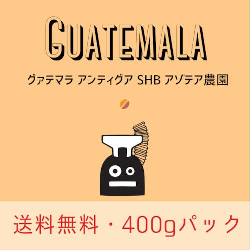 (送料無料)グァテマラ アンティグア SHB アゾテア農園 ブルボン (400g)