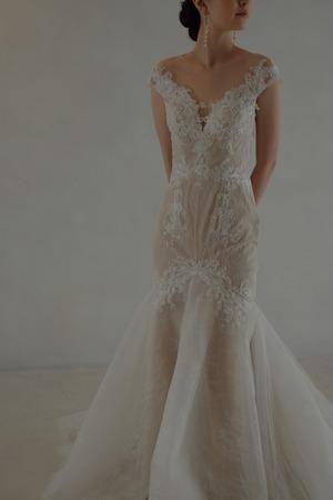 Wedding Dress/rental/Mermaid /DR6009