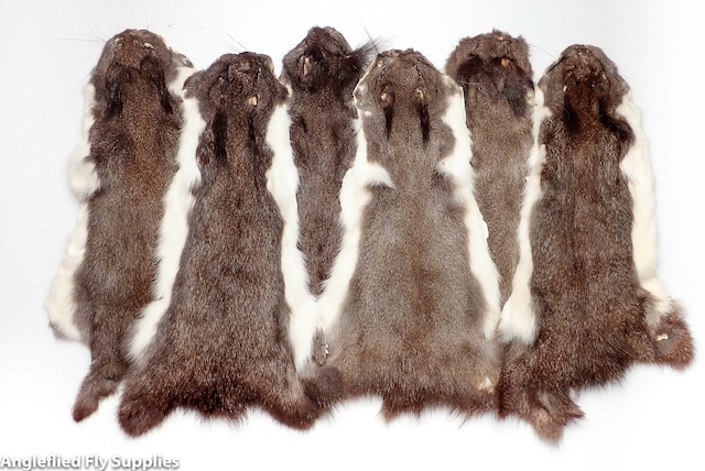 【 AFS 】Pine Squirrel Whole Skin ( Natural White-Berry-Gray) / パインスクイレル