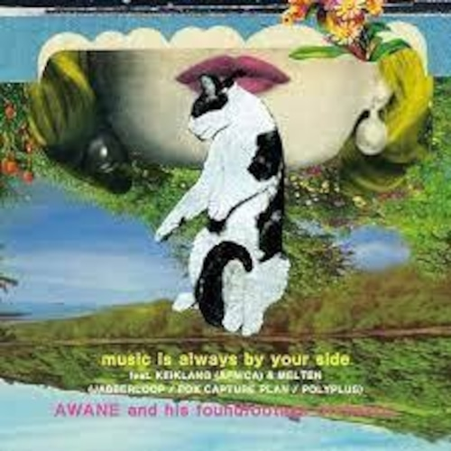 """【RSD/7""""】AWANE and his foundfootage orchestra - music is always by your side / something about us (the LEWD HERTZ live dub)"""
