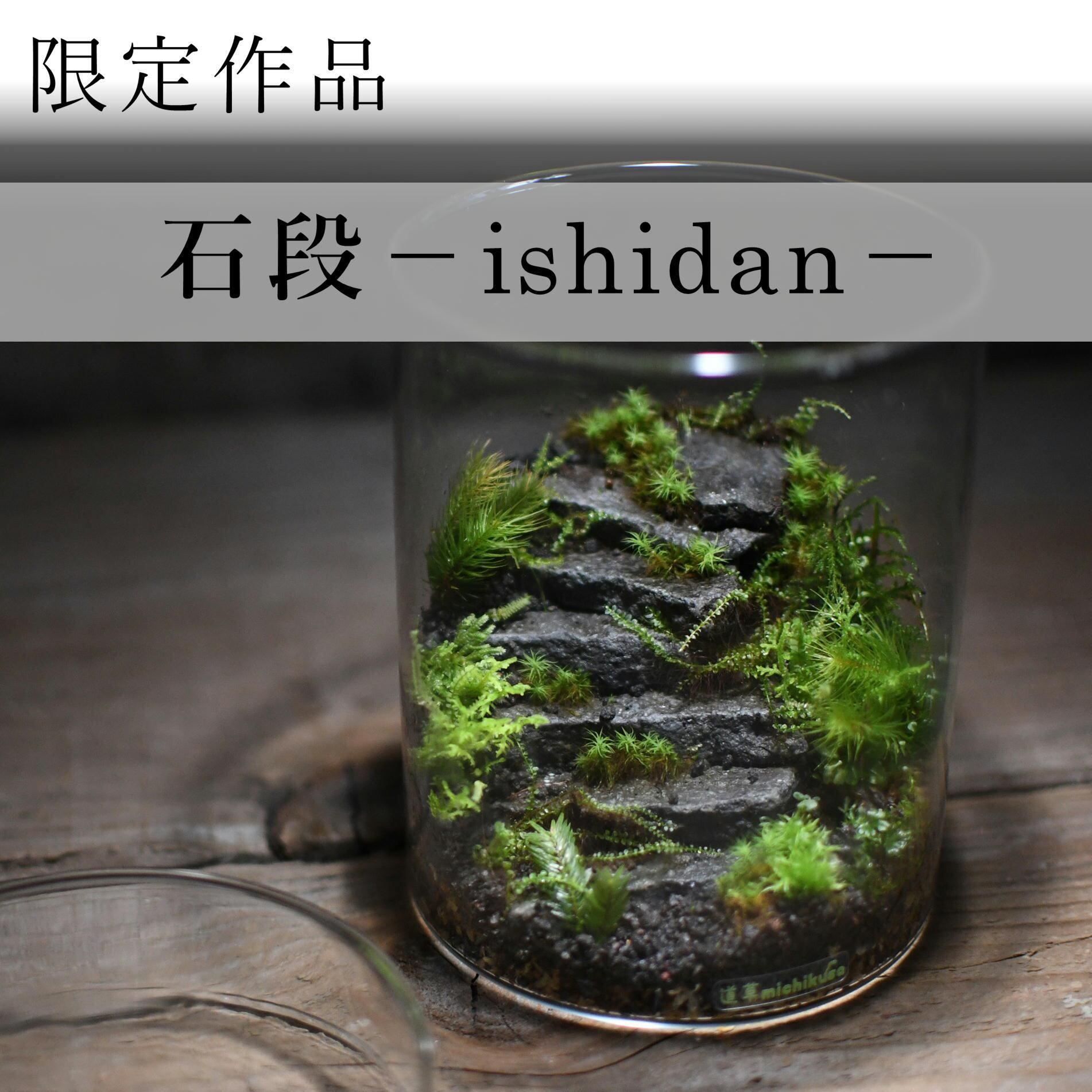 苔景−石段 −【苔テラリウム・現物限定販売】