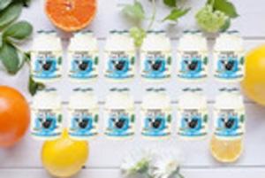 【お買い得2箱セット】飲むヨーグルト「いちだヨーグルト」150ml×12本×2箱セット(自家用G-71-1-2)