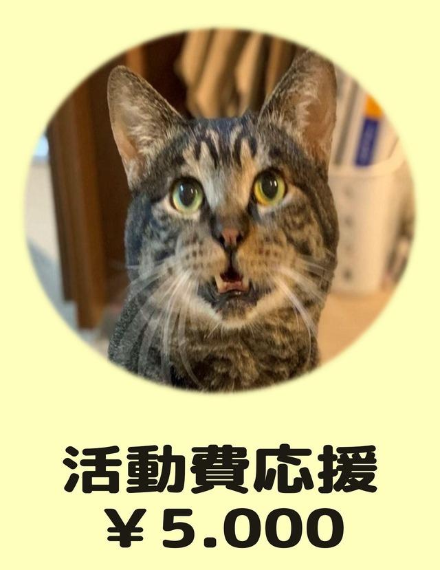 活動費応援(寄付)¥5,000