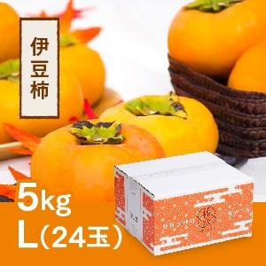 【予約 10月中旬より順次発送】伊豆柿 L 24玉(5kg)