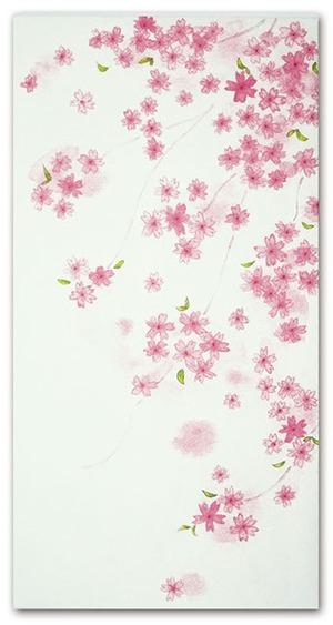 シイング ぽち(長)桜花