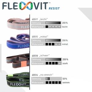 FLEXVIT RESIST-フレックスヴィット レジスト
