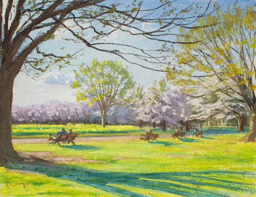 NO.93「桜と陽だまり・4月」