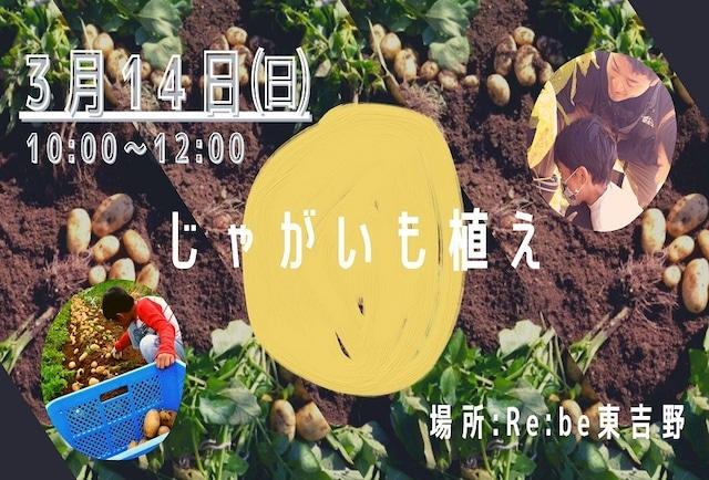 ジャガイモ植えながらまちづくりを語る ~医療介護ワーケーションin奈良県東吉野~