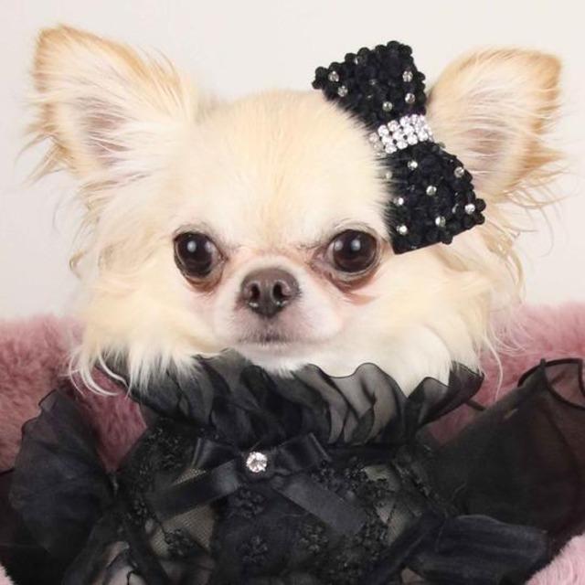 【予約】Luxe birdie フラワーガーデンバレッタ ピンク ホワイト ブラック