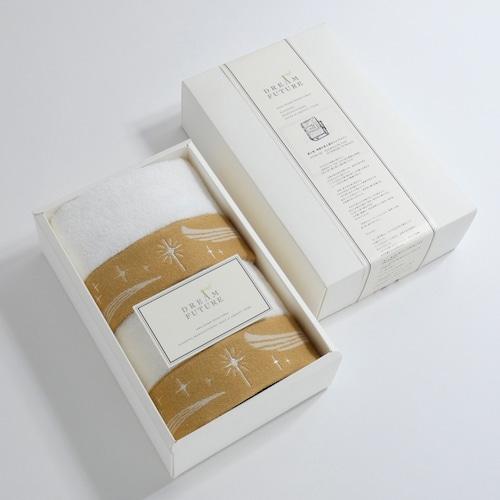 無撚糸(むねんし)高級Hand Towel 2枚SET Twinkle BEIGE / Twinkle BEIGE