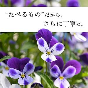 【87farm】食べられる ドライフラワー(ビオラ イエロー)