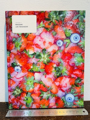 GAS BOOK19 MADSAKI /JUN TAKAHASHI  アンダーカバー