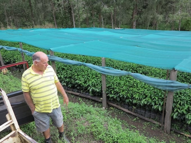 商品管理 パプアニューギニア バロイダ農園 ナチュラル【深煎り】200g
