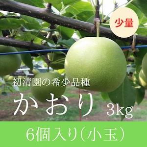【希少な芳醇梨!少量】かおり小玉 6個入り 3kg