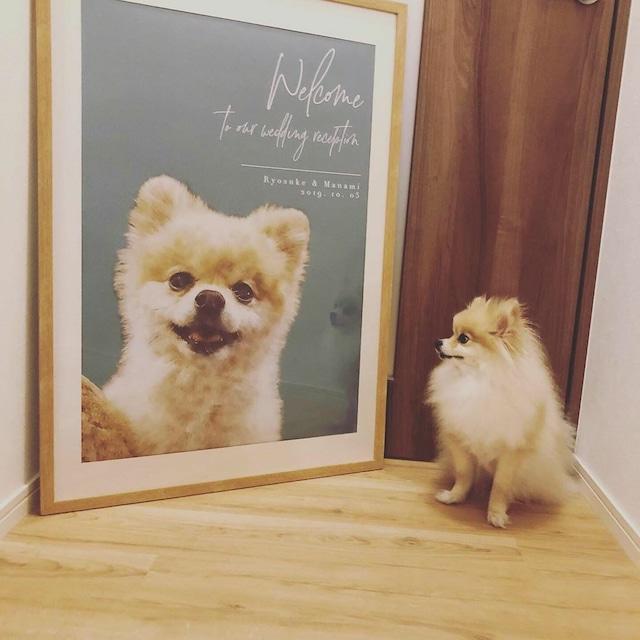 ペットのお写真で作る 水彩画風 ウェルカムボード│犬 ネコ