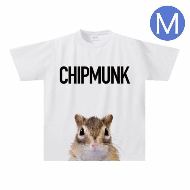 Tシャツ/ドライTシャツ①◆Mサイズ◆/TS-MO-001-M