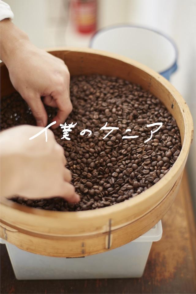 BLEND No.8  中煎り 100g