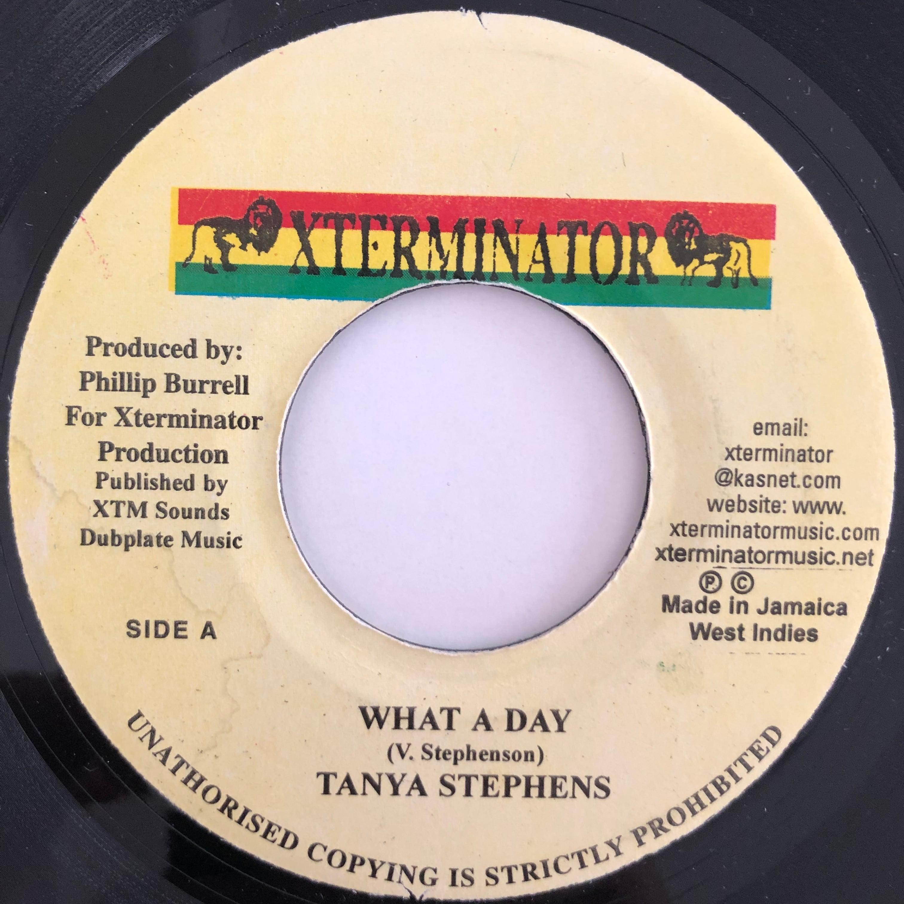 Tanya Stephens(タンヤスティーブンス) - What a day【7-20115】