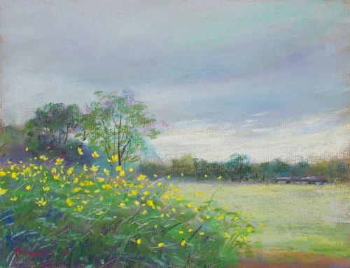 NO.60「秋桜と空の黄色・9月」