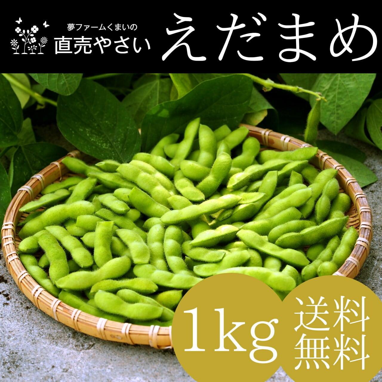 新潟 枝豆 旬の夏 1kg 送料無料 朝採り 収穫当日直送