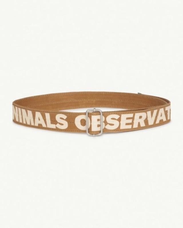 The Animals Observatory/LIZARD KIDS BELT