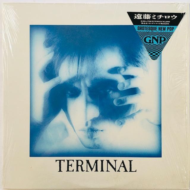 【LP・国内盤】遠藤ミチロウ / Terminal