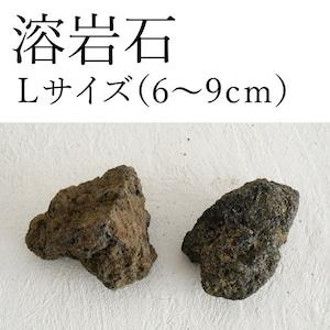 溶岩石 Lサイズ(6〜9cm)2〜3個入り【レイアウト用・着生用】