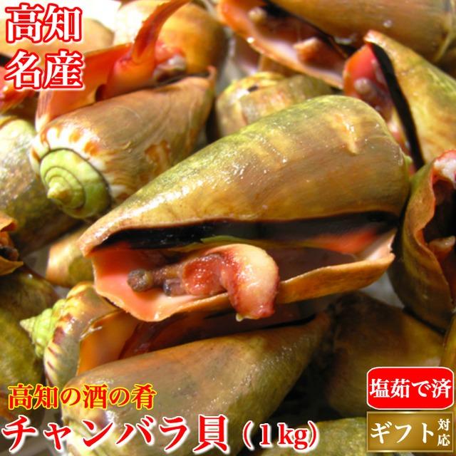 チャンバラ貝 (マガキ貝)500g 高級海鮮珍味 酒の肴 ちゃんばら貝  ギフト グルメ 珍味 海産物 送料無料