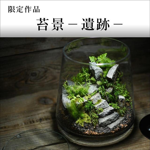 苔景-遺跡-【苔テラリウム・現物限定販売】2021.10.22#4