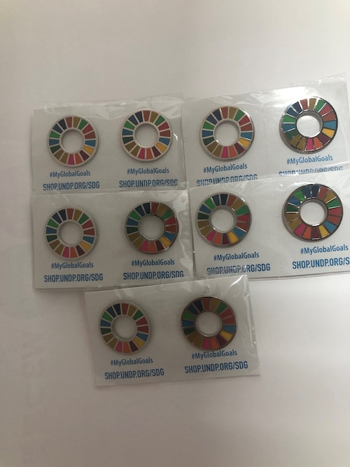 【10個】SDGsピンバッジ『SDGs EVO』