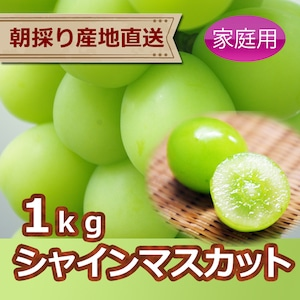 シャインマスカット1kg(家庭用ぶどう)