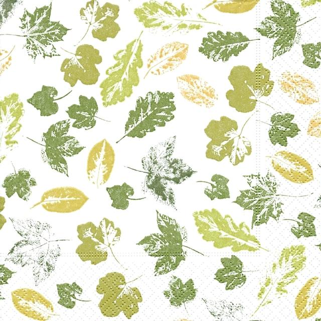 【Paper+Design】バラ売り2枚 ランチサイズ ペーパーナプキン STAMPED LEAVES ホワイト×グリーン