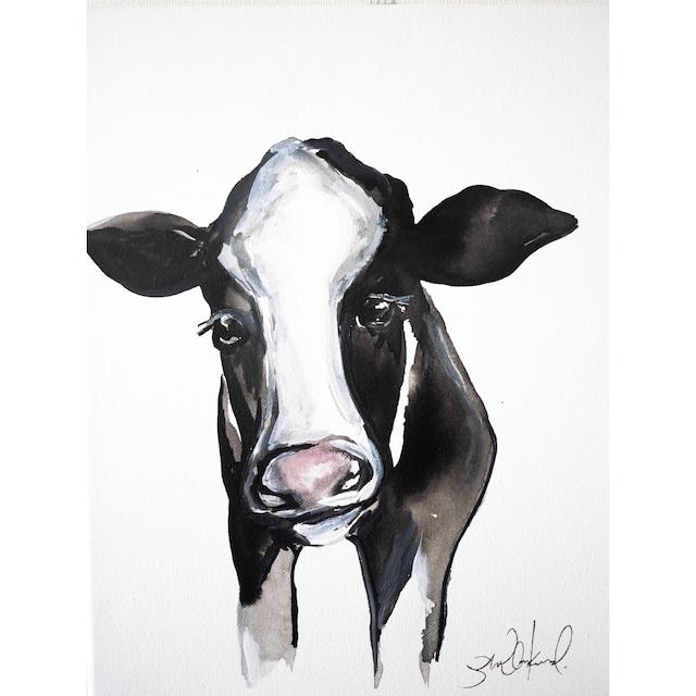 Calf for Comfort