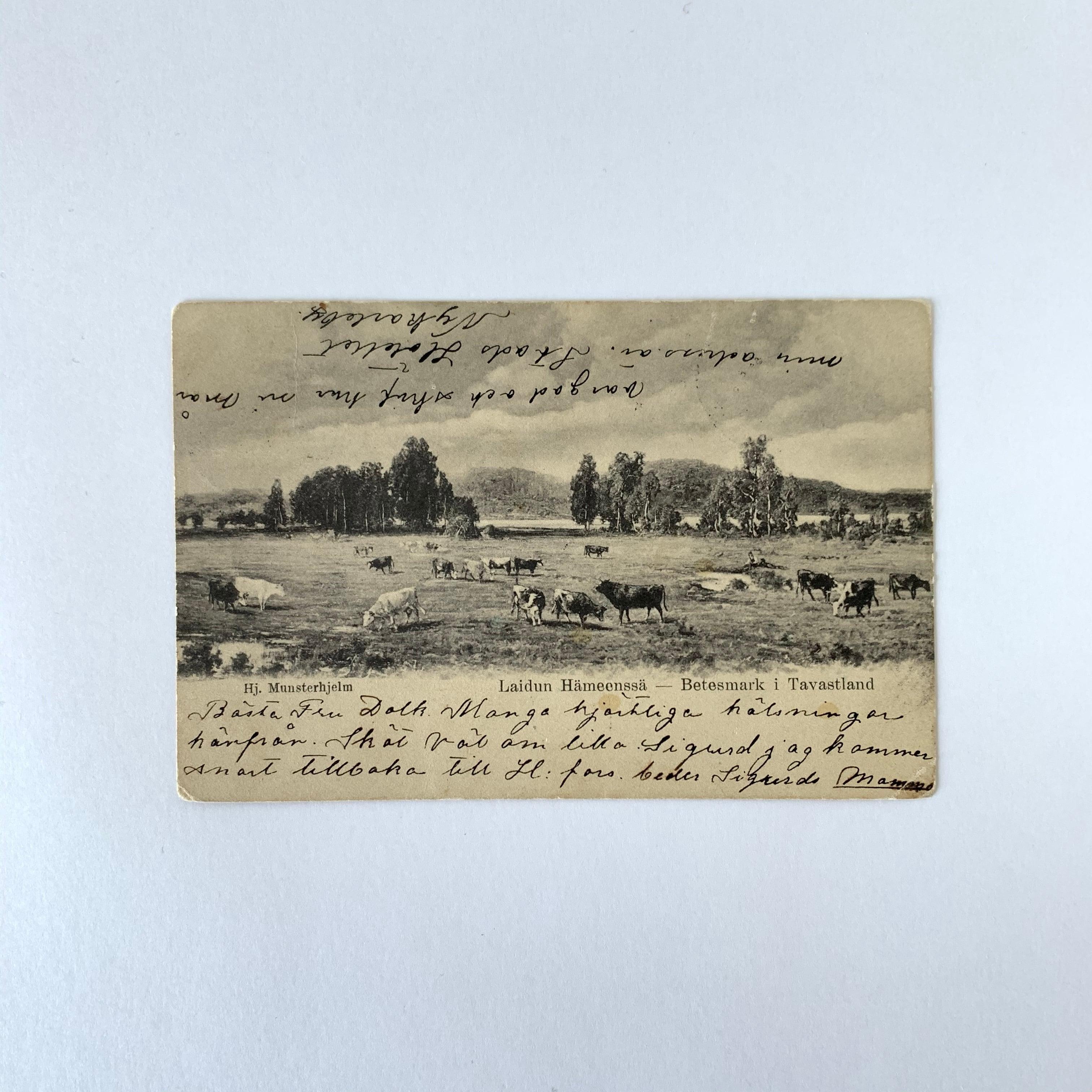 Antique Postcard No.026