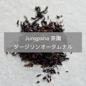 Jungpana茶園 オータムナル