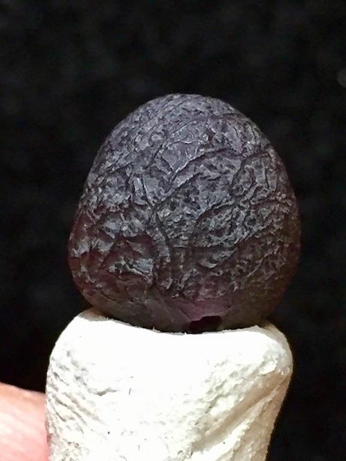 8) 「スーパー・バイオレット」紫ゴビアゲート・ビーズ